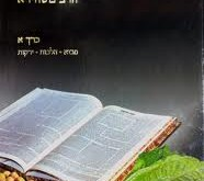 Bedikas Mazon K'Halacha