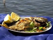 ein gev fish