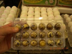 quail-eggs-1
