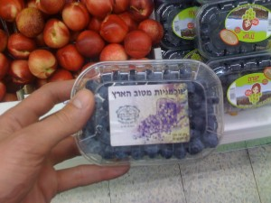 Blueberries with the label of Rav Efrati Shlita