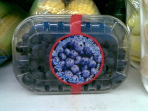 Blueberries without Rav Efrati's seal